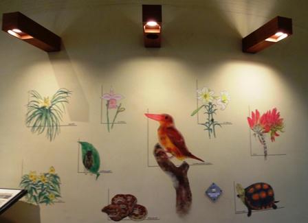 DSC01643 - 野生生物保護センター