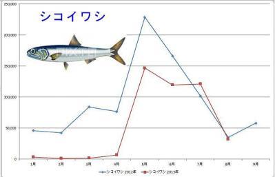 イワシグラフ