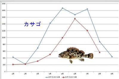 カサゴグラフ
