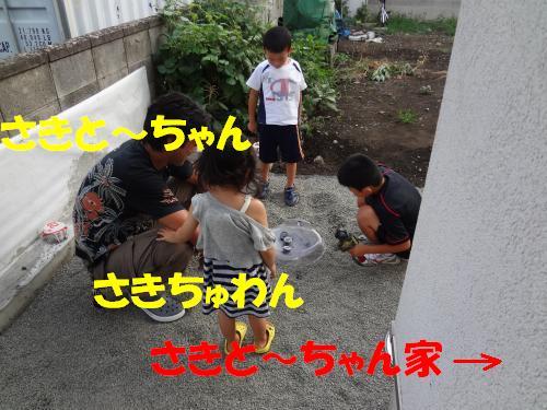 DSC00285_convert_20121028232137.jpg