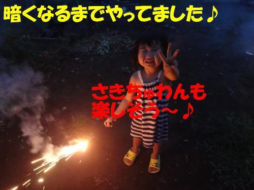 DSC00293_convert_20121028232347.jpg
