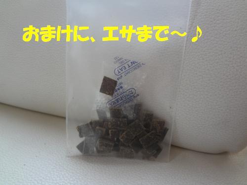 DSC00334_convert_20121028232611.jpg