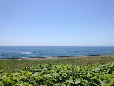 140102_ocean3.jpg