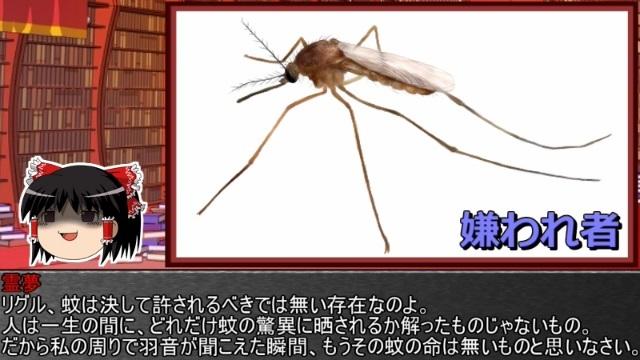 ゆっくり霊夢とやる夫が学ぶ 昆虫大百科 part6