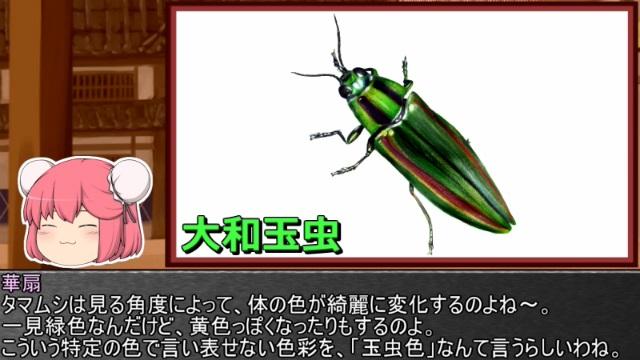 ゆっくり霊夢とやる夫が学ぶ 昆虫大百科 part11