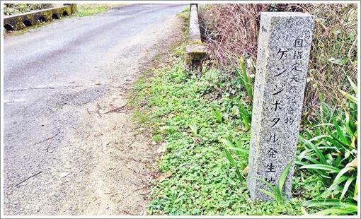 tetsuwarizan02.jpg