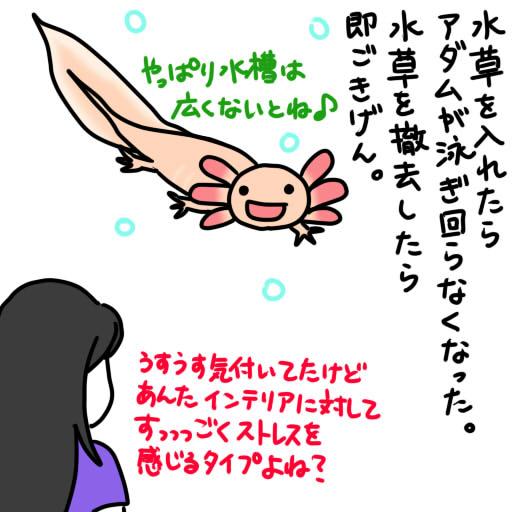 20120605水草撤去(涙)