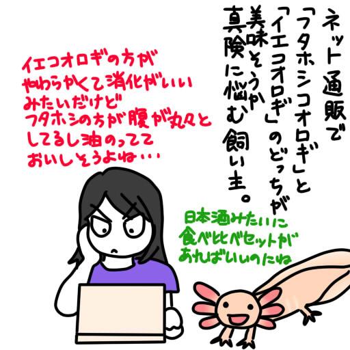 20120822コオロギ通販