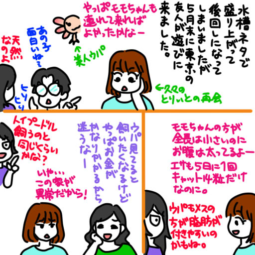 20130626東京の友達が我が家に遊びに来てくれました