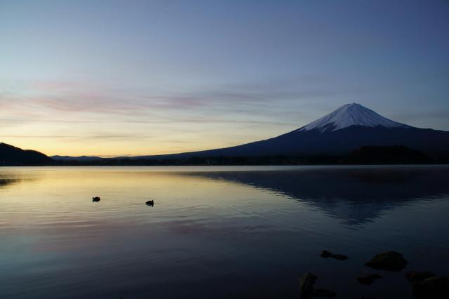 富士山と鴨