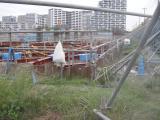 002_convert_20121014113643_grina.jpg