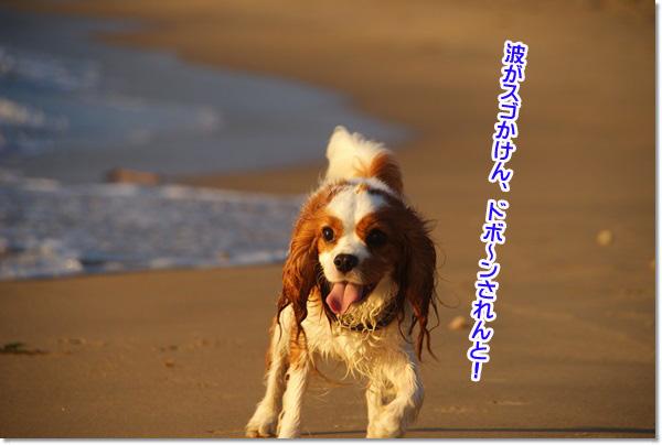 20130717_1011.jpg