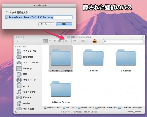 Mavericks_hide_photo2