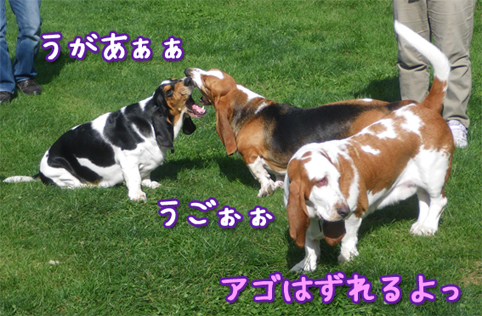 20121007_07.jpg