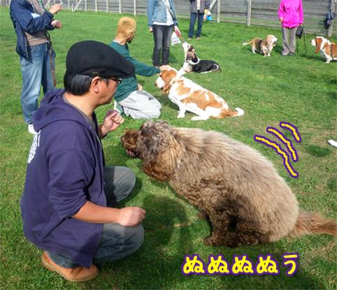 20121007_08.jpg