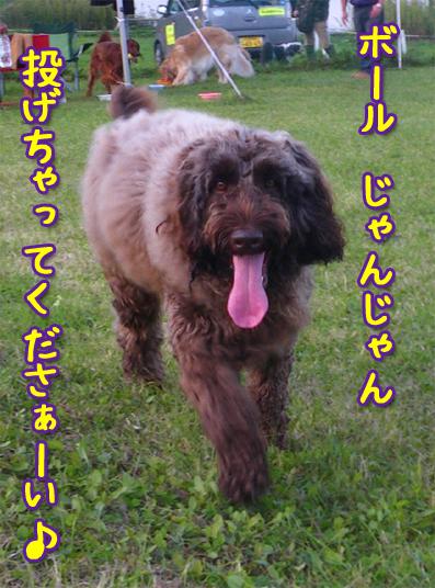 20121011_01.jpg