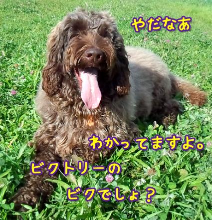 20121013_00.jpg