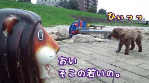 20121013_02.jpg