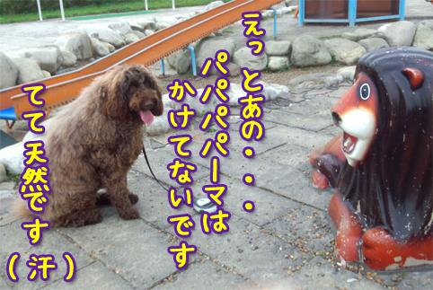 20121013_04.jpg