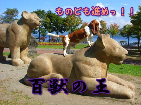 20121013_07.jpg