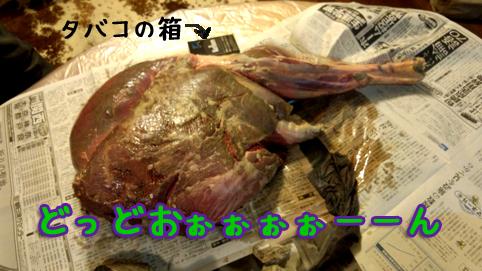 20121015_04.jpg