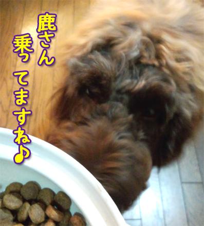 20121018_02.jpg