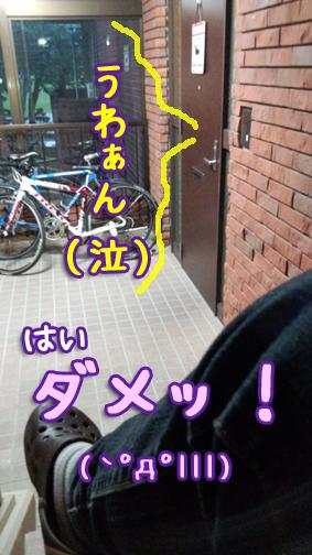 20121018_04_20121018181954.jpg