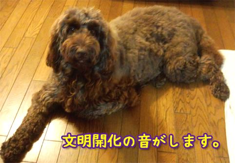 20121021_01.jpg
