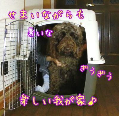20121103_001.jpg