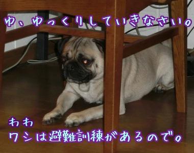 20121123_03.jpg