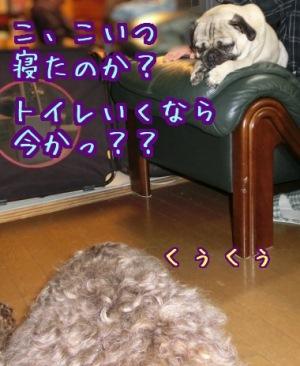 20121123_09.jpg