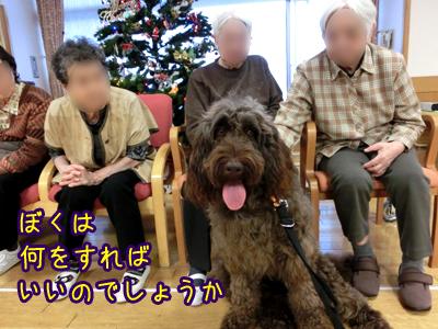 2012_1211_02.jpg