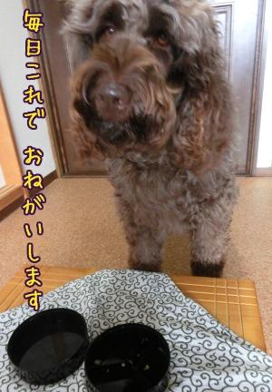 2013_0101_07.jpg