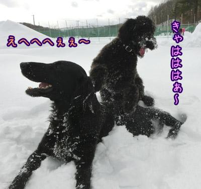 2013_0131_01.jpg