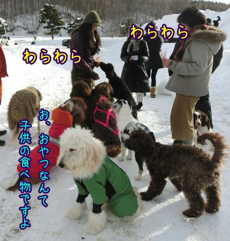2013_0131_09.jpg