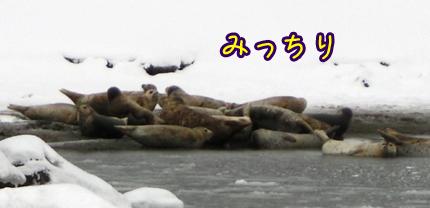 2013_0227_02.jpg