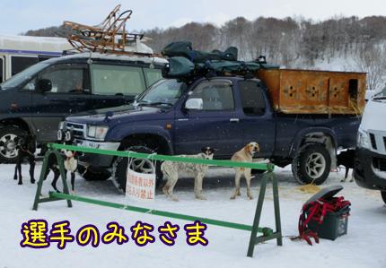 2013_0227_04.jpg