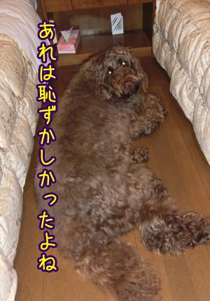 2013_0228_06.jpg