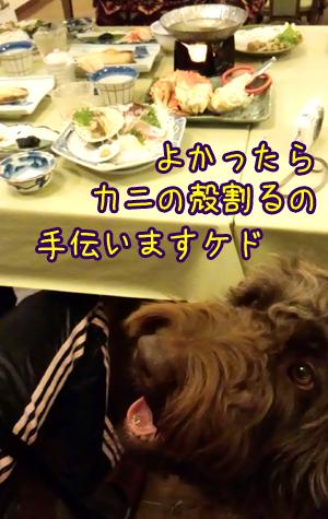 2013_0301_06.jpg