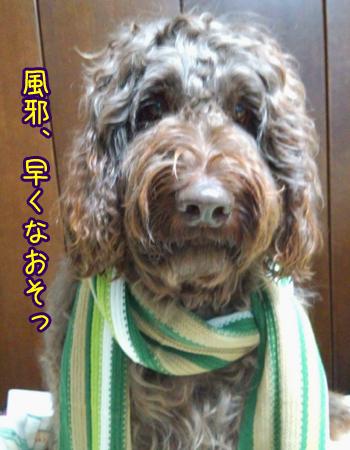 2013_0304_04.jpg