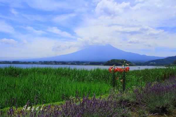 河口湖の富士山(201307211348)