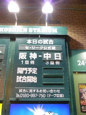 阪神vs中日1