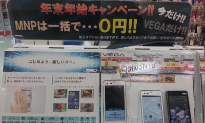 20121230_134521_convert_20130120040130.jpg