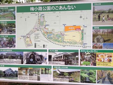 京都水族館 3