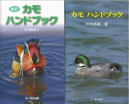 ducks-handbook