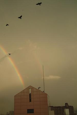 rainbow120831-2