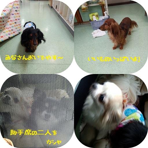CYMERA_20140210_140441.jpg