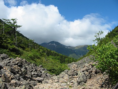 仙水峠からの仙丈岳