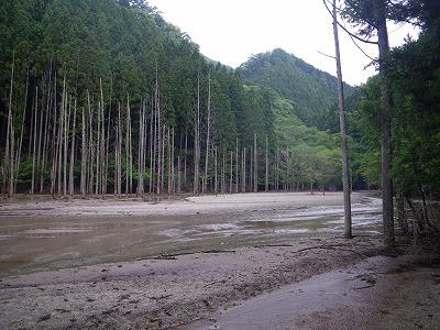 ミニ大正池