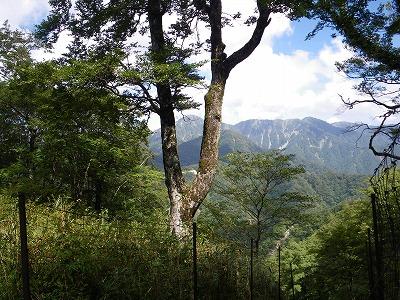 蛭ヶ岳を望む